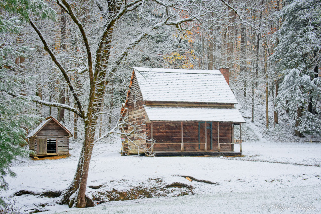 """Henry Whitehead Cabin in the snow"""